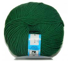 Пряжа Премьер (Premiere), цвет 699 зеленый