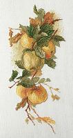"""Набор для вышивания """"Аромат яблок"""" по рисунку К. Кляйн"""