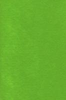 Лист фетра, салатовый, 20см х 30см х 1 мм, 120 гр/м2