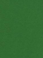 Лист фетра, зеленый, 30см х 45см х 2 мм, 350 гр/м2