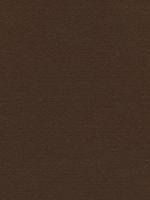 Лист фетра, коричневый, 30см х 45см х 3 мм
