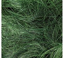 Сизаль, 50 г, цвет темно - зеленый