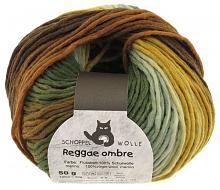 Пряжа Reggae Ombre, 50 гр., цвет 1660