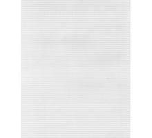 Канва пластиковая 20х28,5
