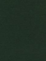 Лист фетра, темно зеленый, 30см х 45см х 3 мм