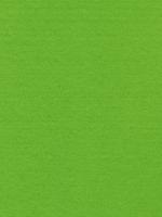 Лист фетра, светло зеленый, 30см х 45см х 3 мм