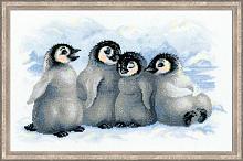 """Набор для вышивания арт.СС-1323 Б """"Забавные пингвины"""" 40х25 см"""