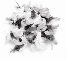 Декоративные перья серое ассорти 2г, 30шт