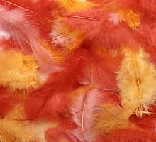 Декоративные перья красное ассорти 2г, 30шт