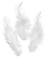 Перья петушиные белые, 10 см