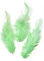 Перья петушиные нежно-зелёные, 10 см