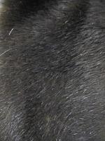 Мех искусственный норка черно-коричневая