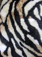 Мех искусственный тигр