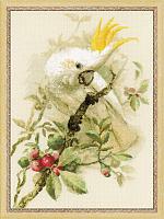 "Набор для вышивания арт.СС-1362 ""Белый какаду"" 30х40 см"